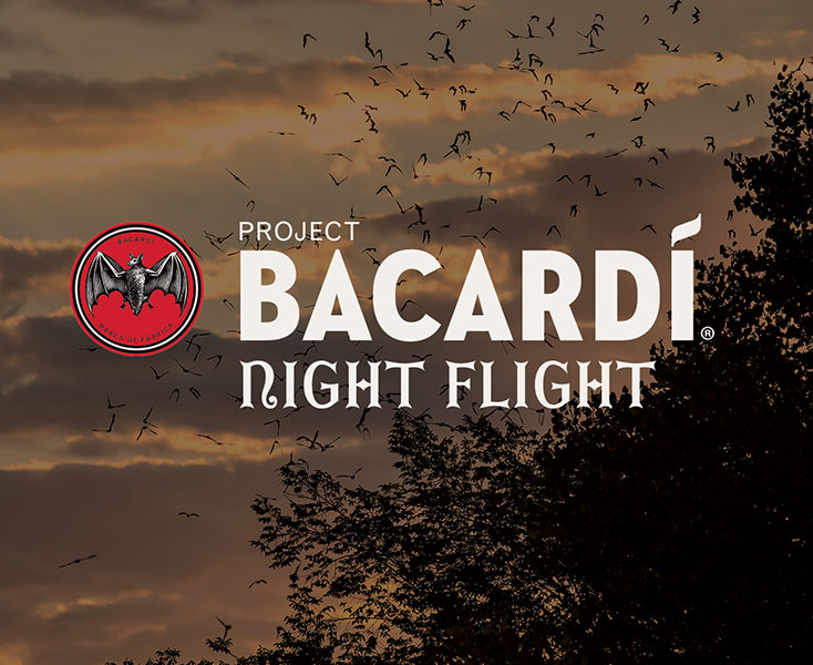 Bacardi Night Flight